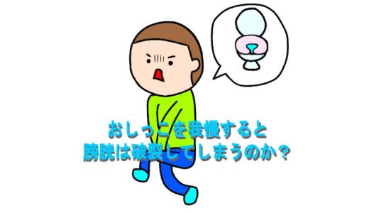 おしっこを我慢し続けると本当に膀胱は破裂してしまうのか?体内で起こっていることとは?