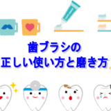 歯ブラシの 正しい使い方と磨き方