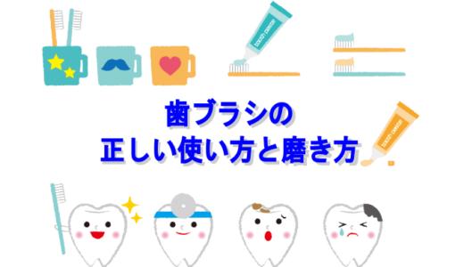 【保存版】歯ブラシの正しい使い方と磨き方で輝く綺麗な白い歯へ
