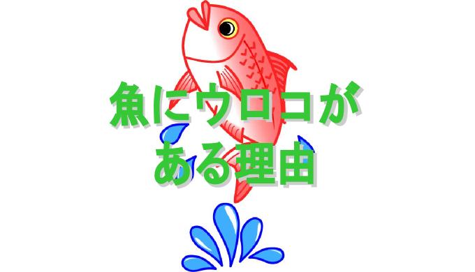 魚にウロコがある理由