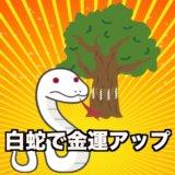 熱田神宮の大楠の白蛇で金運アップ