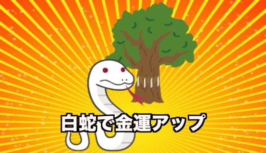 熱田神宮の大楠に住んでいる白蛇を見ると金運・開運アップ!?