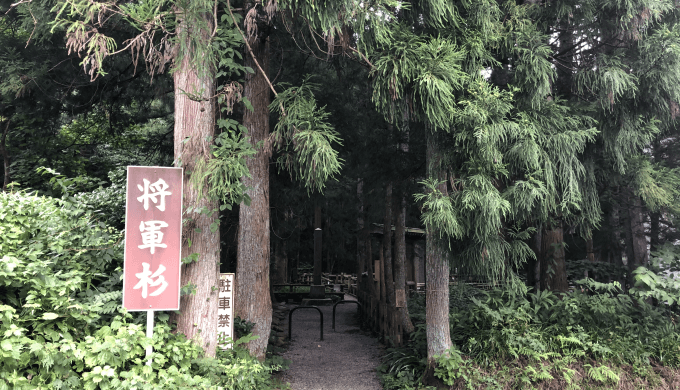 パワースポットの将軍杉を見に行こう!