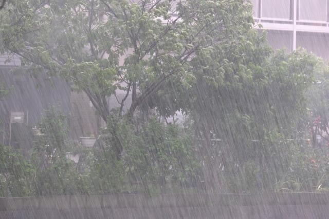 夕立の定義ってあるの? にわか雨やゲリラ豪雨との違い